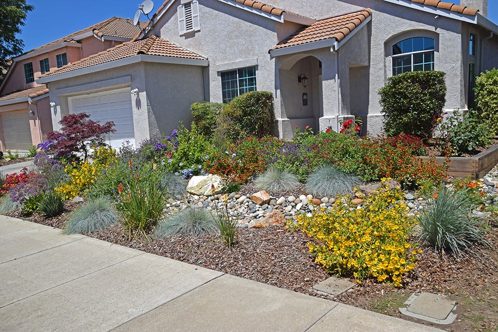 this yard is a colorful addition to this pittsburg neighborhood that will be easy to take care of