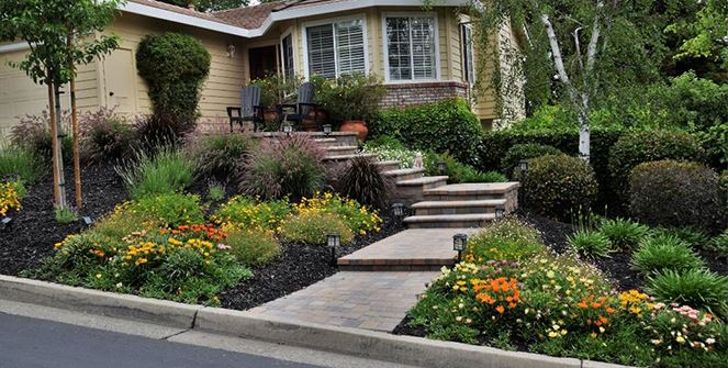 Water-Wise Landscaping Webinar Series