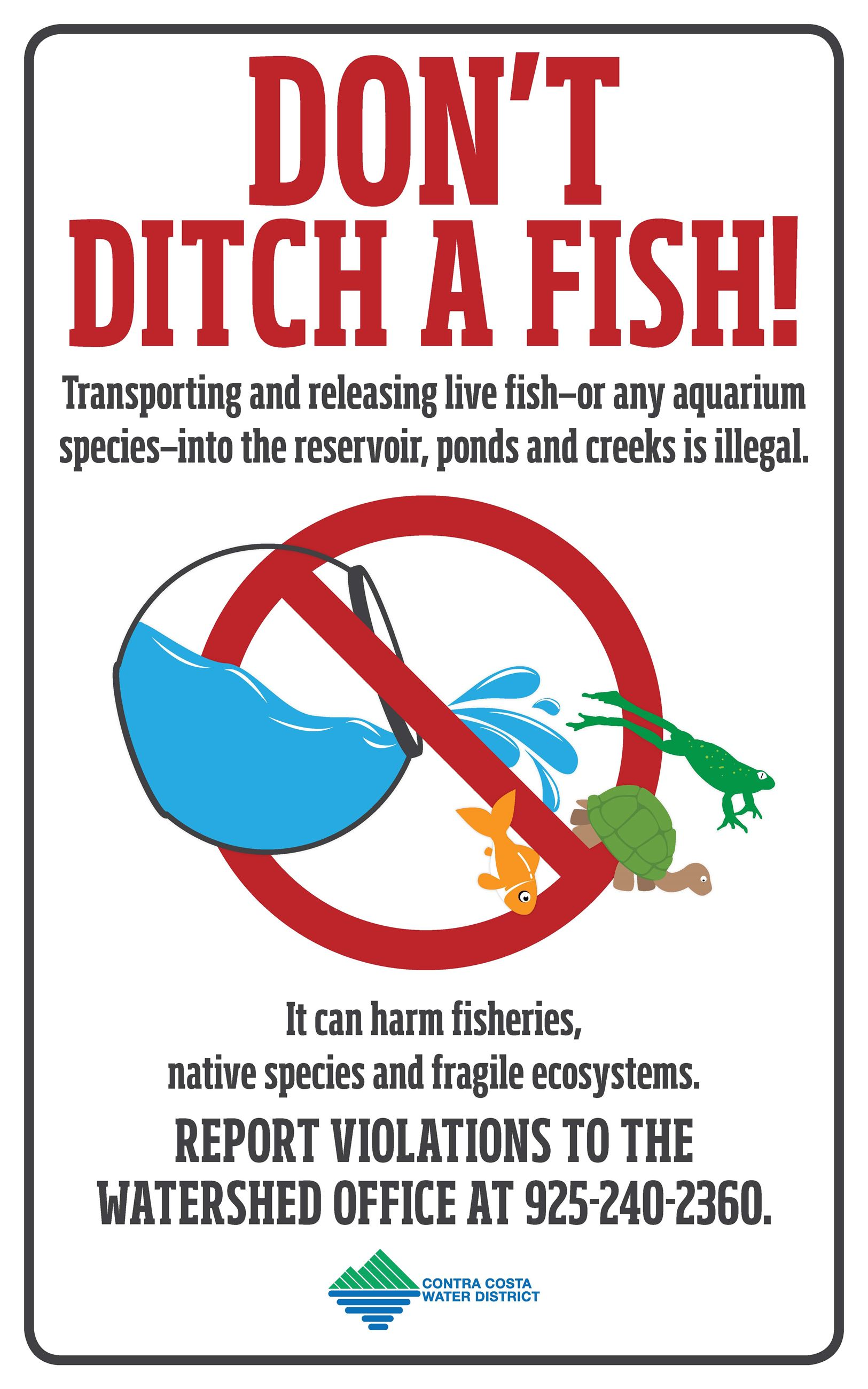 Do not Ditch a Fish