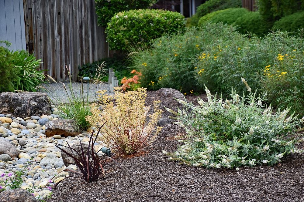Mix of perennials add color and texture