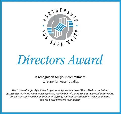 Partnership Treatment Directors Award