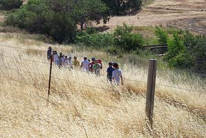 Kids Hiking at Los Vaqueros