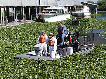 The California Department of Boating and Waterways clearing out the hyacinth.