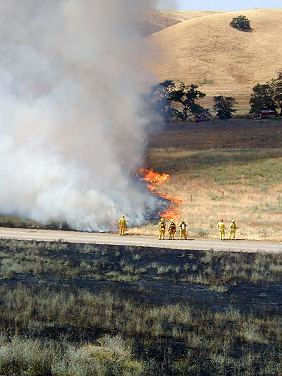 Firefighters deal with field fire
